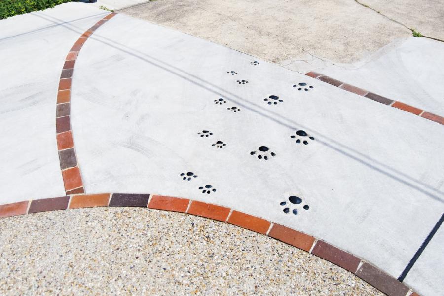 コンクリート舗装にネコの足跡